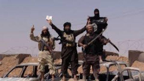L'ISIS: ALCUNI DATI