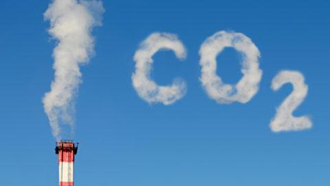Preservare la natura, un modo per vivere sereni sconfiggendo le emissioni di CO2