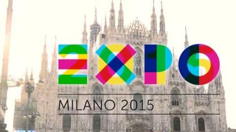 EXPO MILANO 2015.