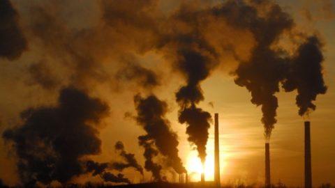 Gli effetti della CO2
