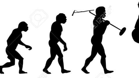 L'EVOLUZIONE DELLA MUSICA
