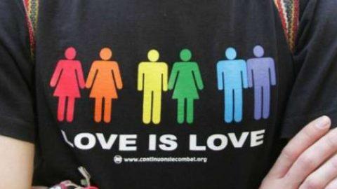 COPPIE GAY (unione civile e stessi diritti)