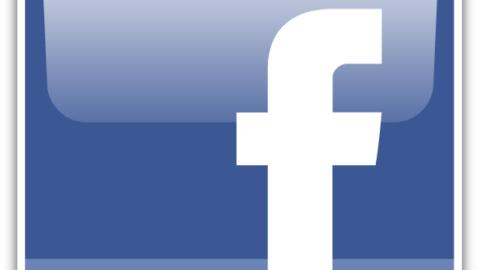 Facebook: il libro delle facce.