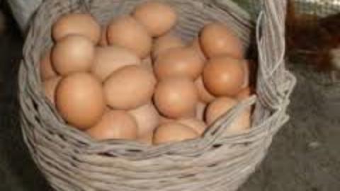 Non togliere le uova dal paniere