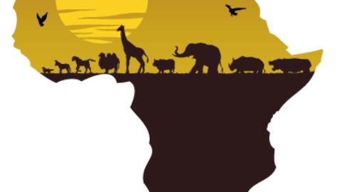 L'Africa alla riscossa