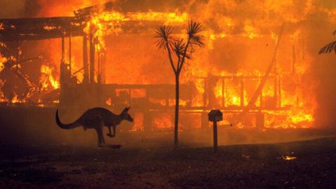 Stiamo bruciando il nostro futuro