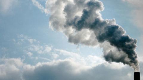 Polveri sottili: una minaccia per l'uomo e per l'ambiente