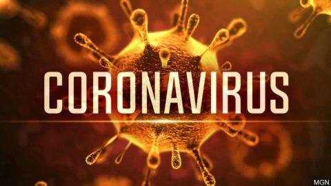Coronavirus, stiamo solo esagerando o vale la pena preoccuparsi tanto