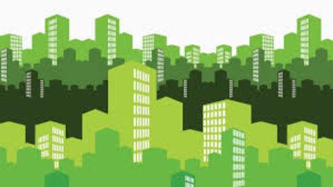 Il futuro del grigio è verde?